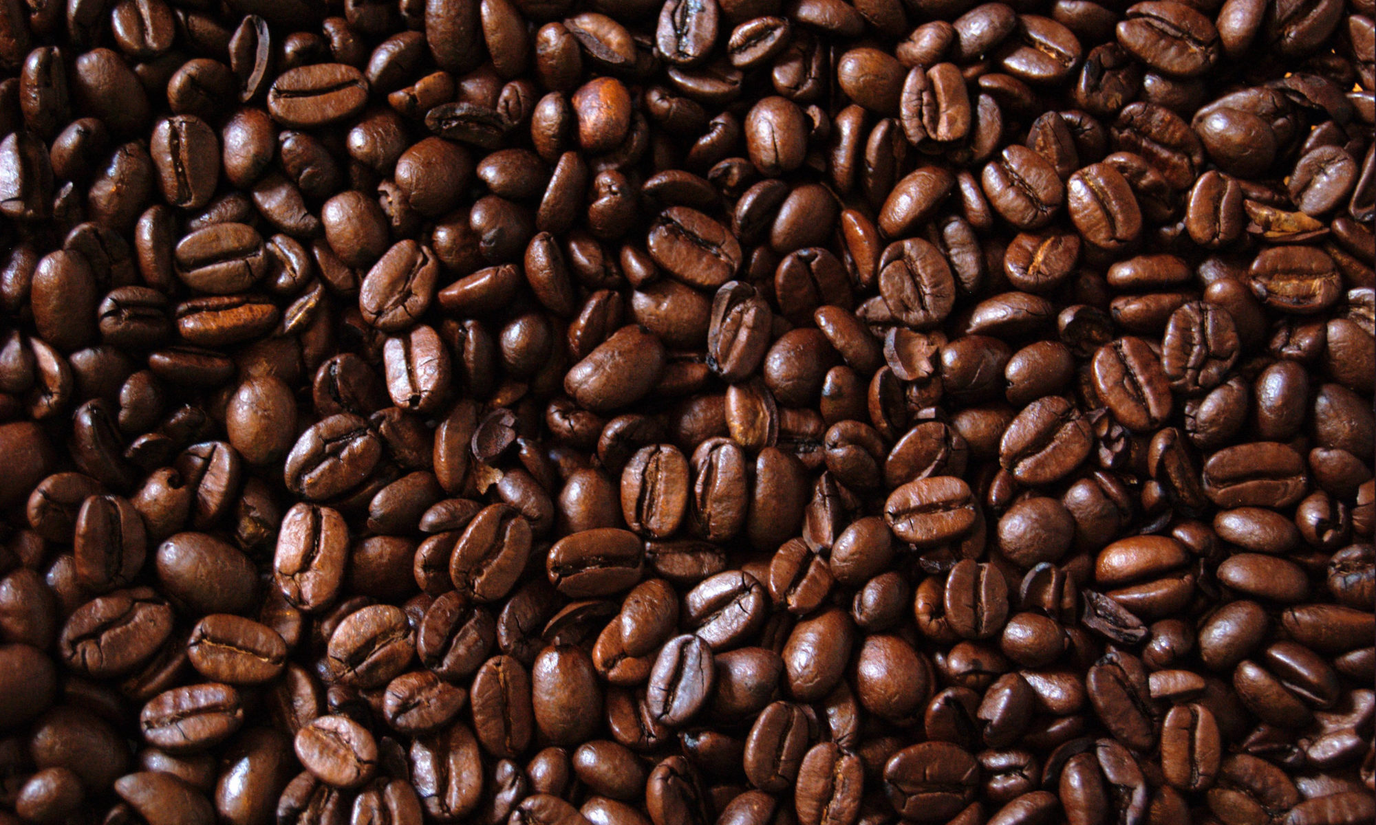 What Is Jamaican Blue Mountain Coffee